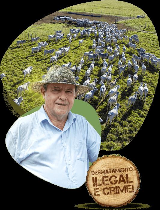 imagem-desmatamento-ilegal